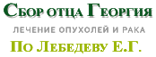 +79065647461